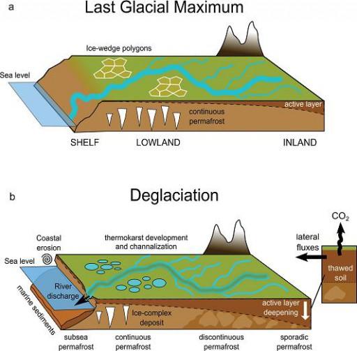 Modello concettuale che descrive l'apporto di materiale terrestre in aree dominate da permafrost in differenti periodi glaciali-interglaciali (a) Durante periodi glaciali il carbonio organico tende ad accumularsi velocemente mentre il suolo è caratterizzato da un strato non congelato relativamente sottile che stagionalmente scambia con l'atmosfera ('active layer'). In queste condizioni il trasporto di sostanza organica verso l'Oceano Artico è modesta. (b) Come le temperature si alzano durante la deglaciazione, il permafrost rilascia materiale precedentemente intrappolato nel suolo. Questo processo fisicamente avviene con l'inspessimento dell''active-layer' in congiunzione con altri processi tipo termocarsismo e sviluppo del reticolo idrografico. L'implicazione climatica di questa destabilizzazione termica è la trasformazione di materiale organico virtualmente stabile in un substrato disponibile per la degradazione microbica e quindi la produzione di anidride carbonica e metano.