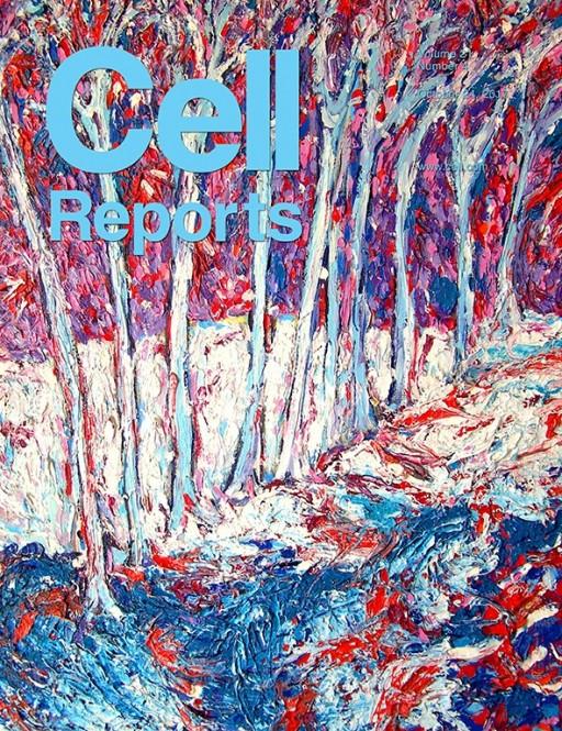 cellereports
