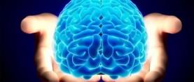 Bloccare l'infiammazione per ridurre le disabilità cognitive
