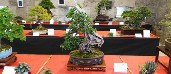 Giappone Svelato al Fortino Sant'Antonio di Bari