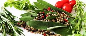 Piante aromatiche, un vero toccasana per la tua salute