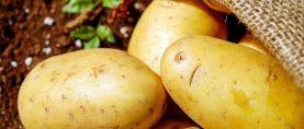 La patata buona e salutare: perfetta in cucina e un vero toccasana per stress e ipertensione