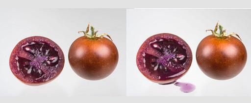 Il pomodoro 'bronzeo' per alleviare i sintomi delle infiammazioni croniche intestinali
