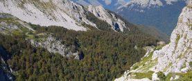 L'ecologia storica rivela la trasformazione del paesaggio nell'Appennino centrale