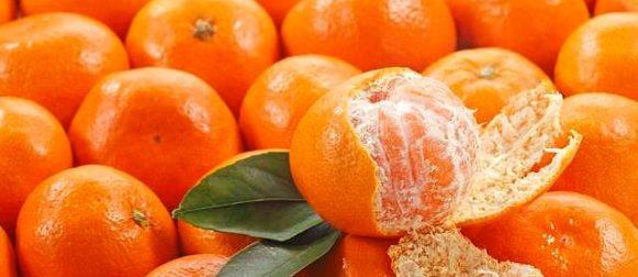 Mandarino: salute e bontà in uno spicchio!