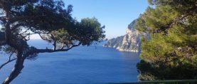 Vetrine d'artista a Capri