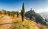 Dante Alighieri a 500 anni dalla morte: Viaggio in Italia in versi.