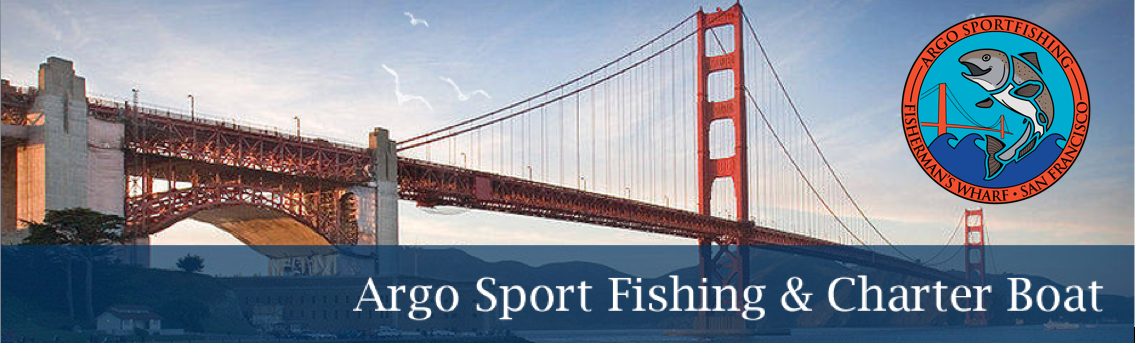 SF Guided Fishing Trips and Charter Boat in San Francisco Bay