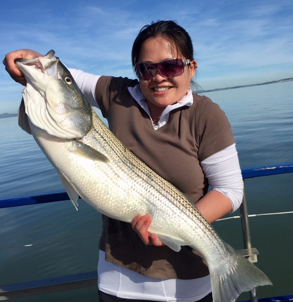 Smiling woman holding large striped bass on a boat