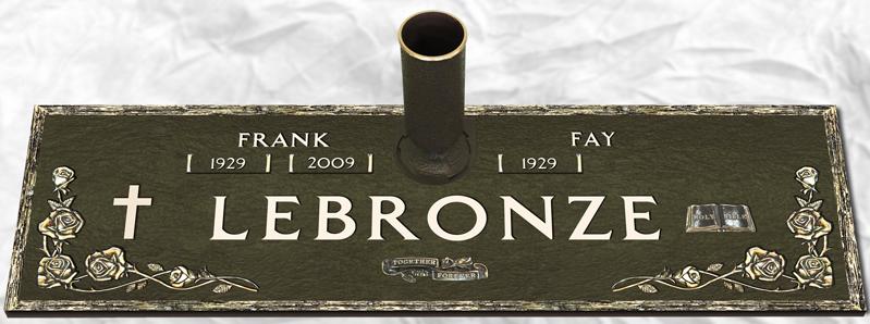 Bronze Companion 5