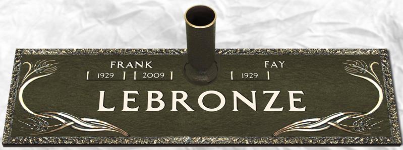 Bronze Companion 6