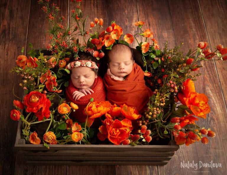 5 Adorable Newborn Twin Poses | Washington DC Newborn Photographer