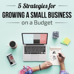 Growing a Small Business