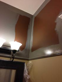 a first coat of paint is rolled on to the walls and the transition begins.