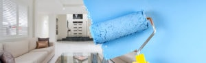 painters hand holding paint roller painting wall in blue paint