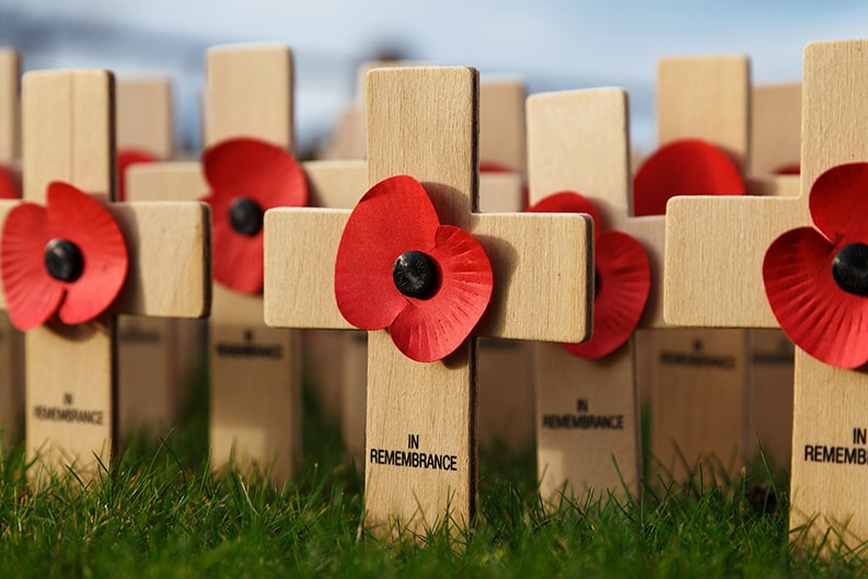 Remembrance day wooden memorial cross and red poppies