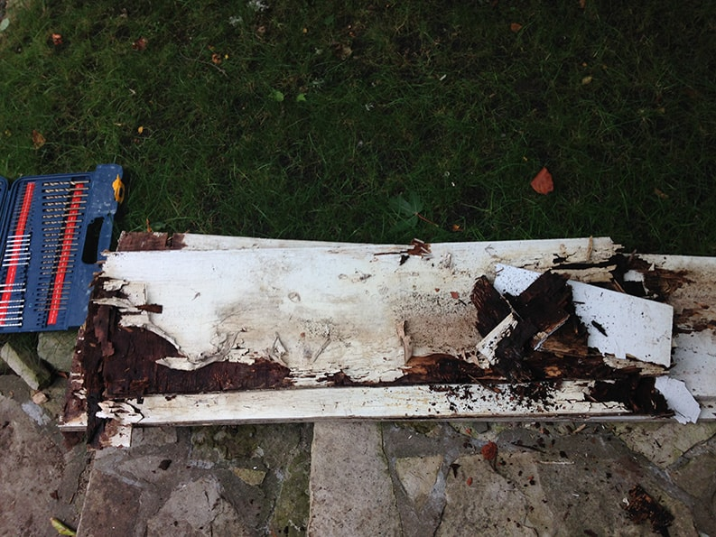 rotted wood in the yard and professional tools for repairs