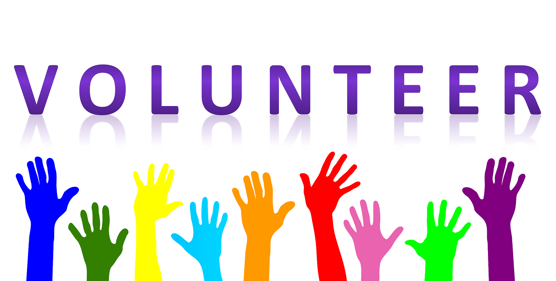 volunteering in Ottawa