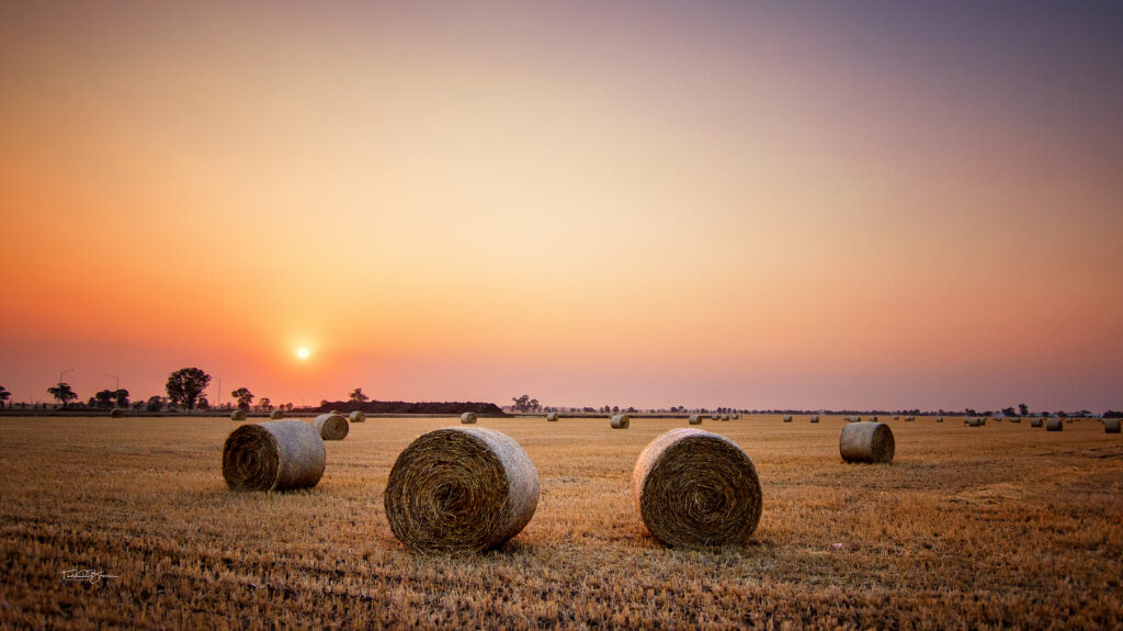 Hay Stacks in a smokey sunrise web