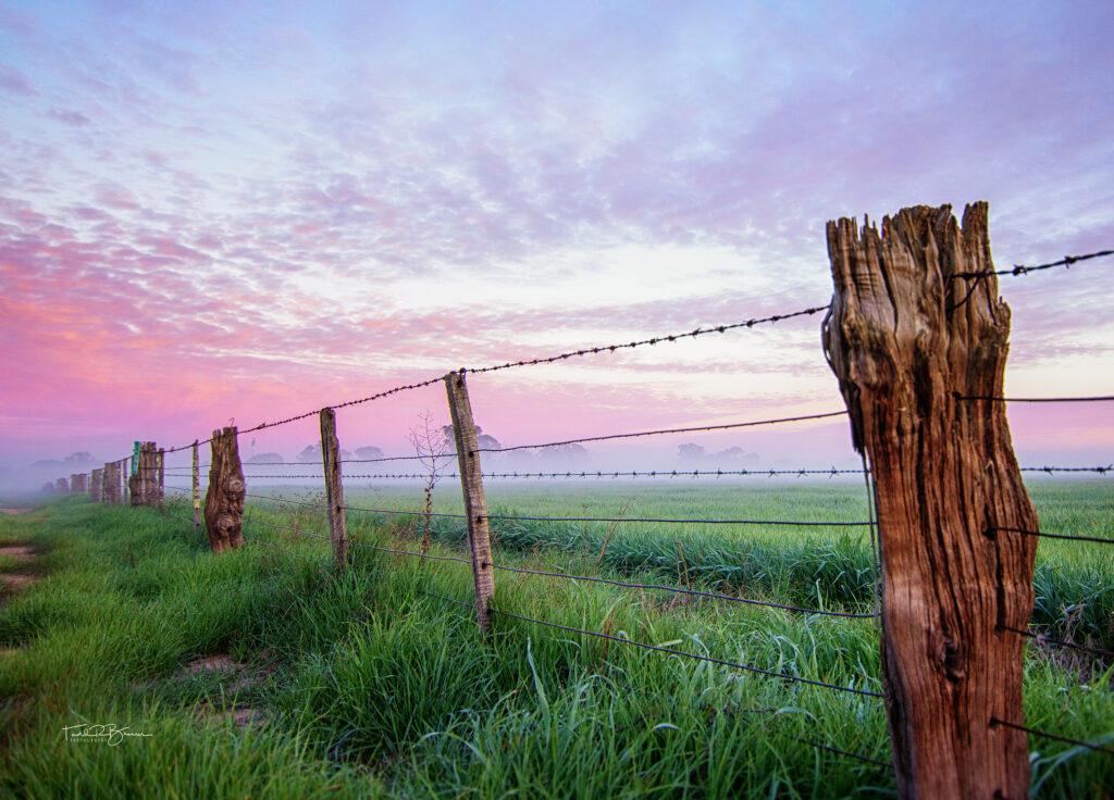 Rural Lush web