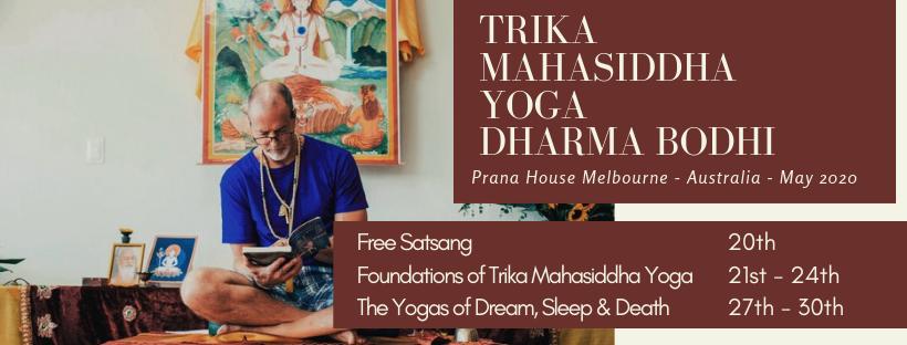 Dharma Bodhi Training 2020
