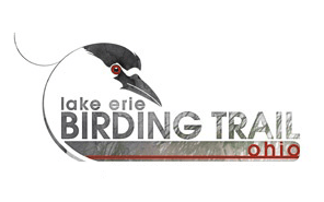 Lake Erie Birding Trail