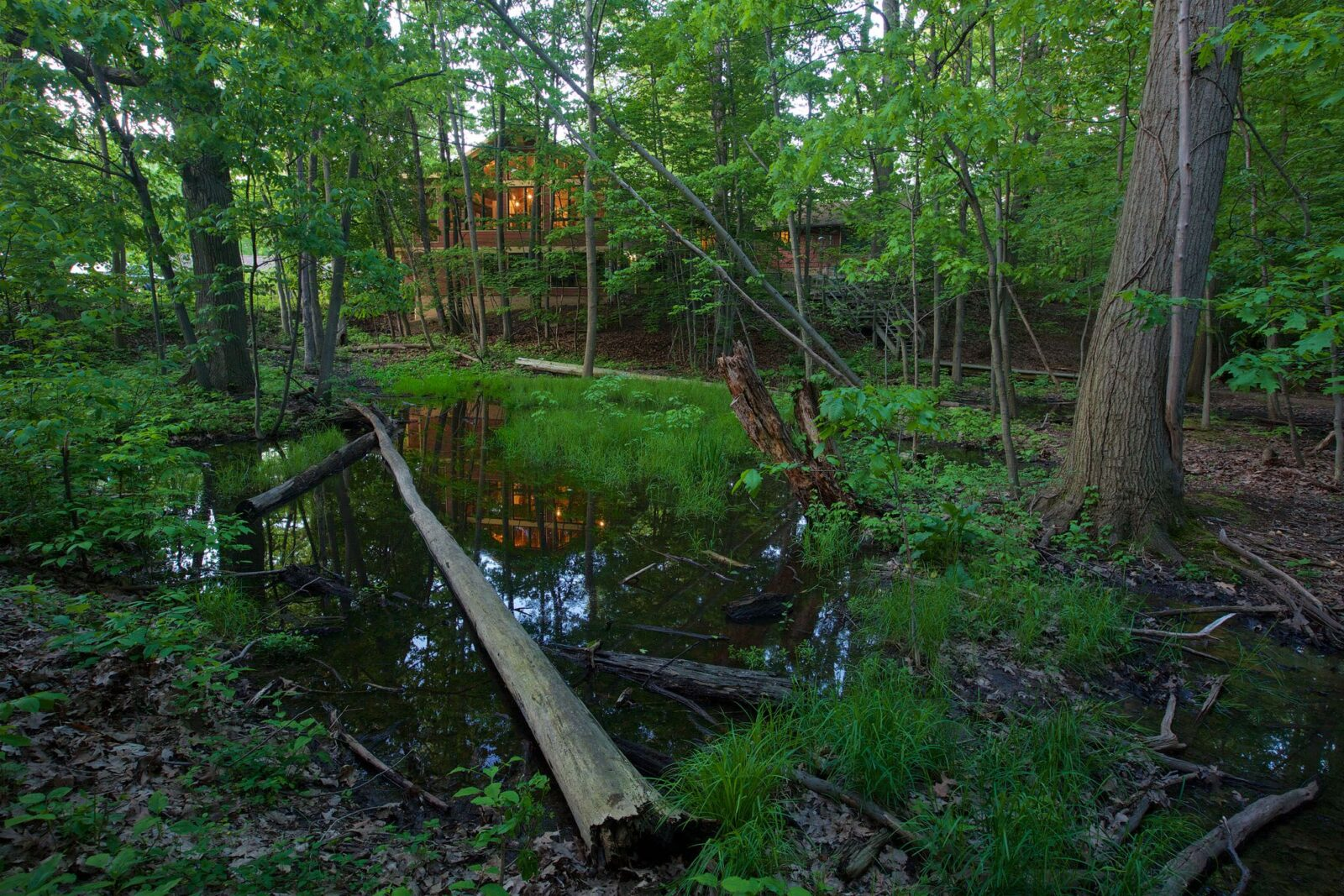 Vernal pool Shaker Lakes