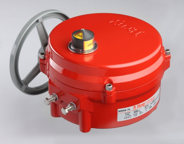 Bray Electric Actuator
