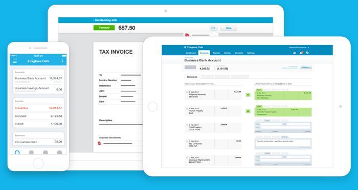 Xero Accounting Across Devices