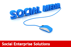 Salesforce Social Enterprise Solutions