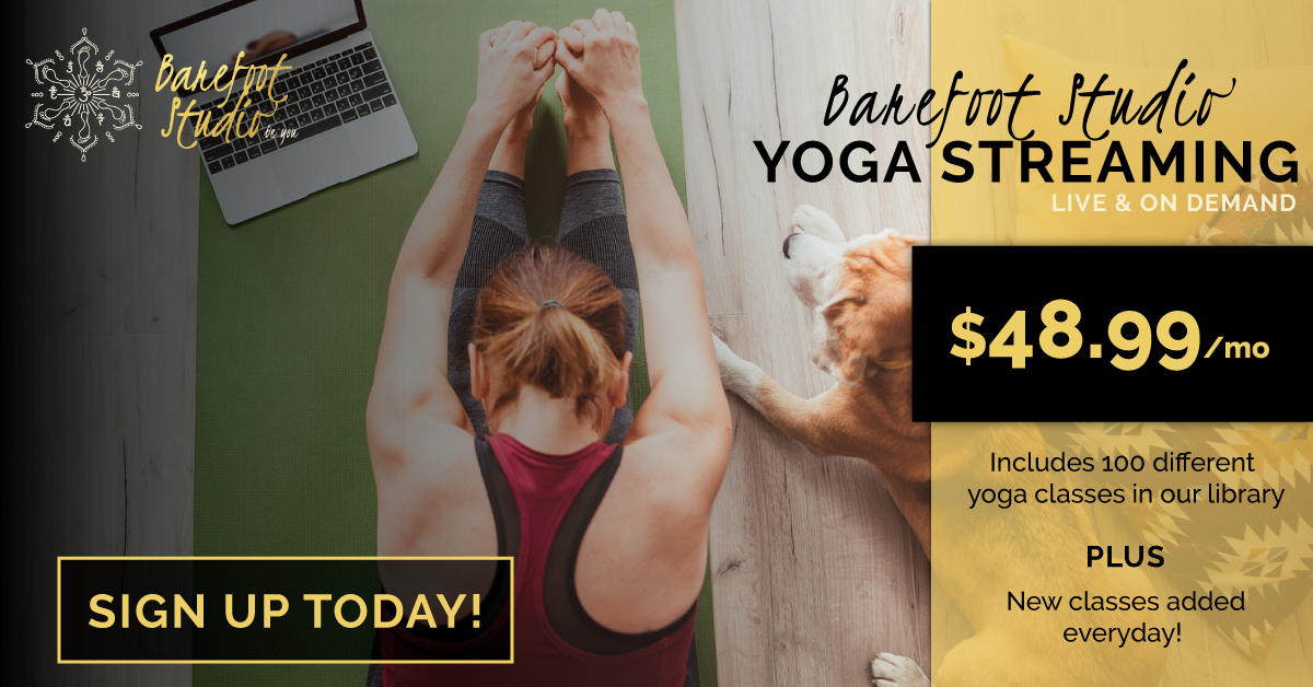 Barefoot Studio Yoga Streaming Yoga Wellness Education