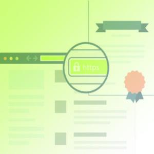 SSL Certificate in browser