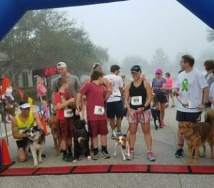 doggies for duchenne 5k start