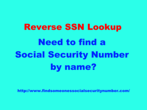 reverse ssn lookup