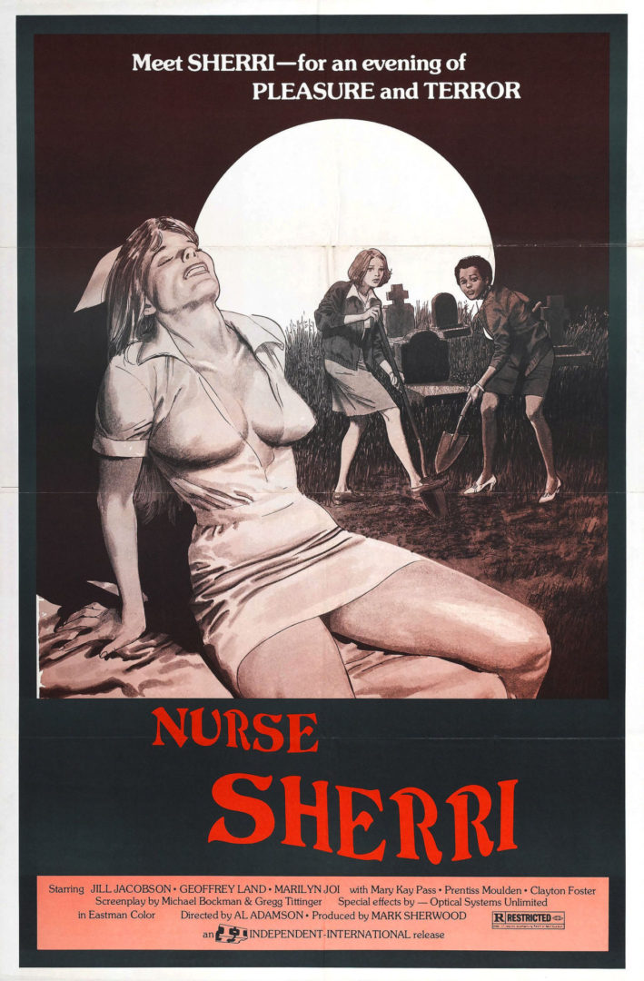https://secureservercdn.net/198.71.233.254/a1c.842.myftpupload.com/wp-content/uploads/2020/05/NURSE-SHERRI-POSTER-scaled.jpg