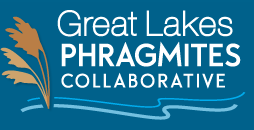 Great Lakes Collaborative