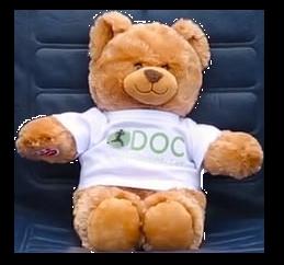 Carlsbad-nextmed-medical-doctor-clinic-med-physician-medcenter-health-center-event-doc-orthopedic-care-bear