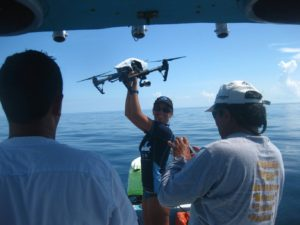 Drone for spotting mantas with Dr Bonfil and Blue Core A.C.