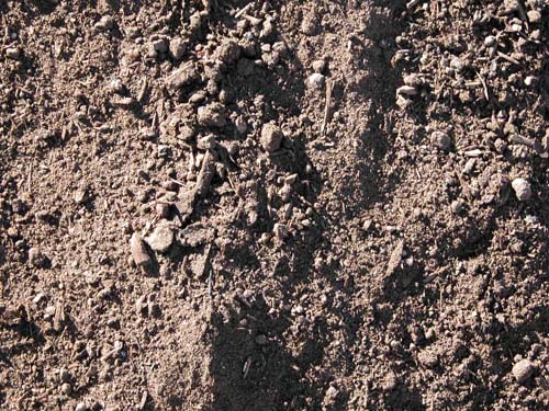 Amended Top Soil