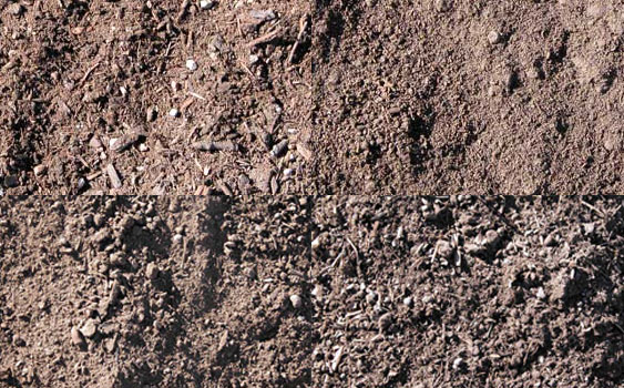 Soils and Composts