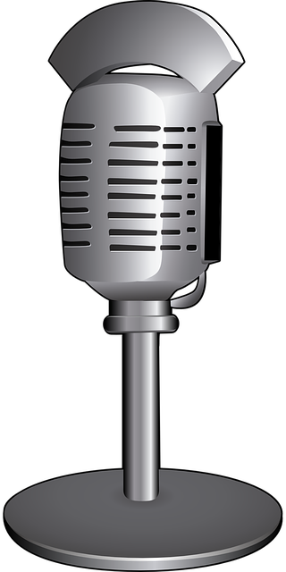 microphone-1192198_640