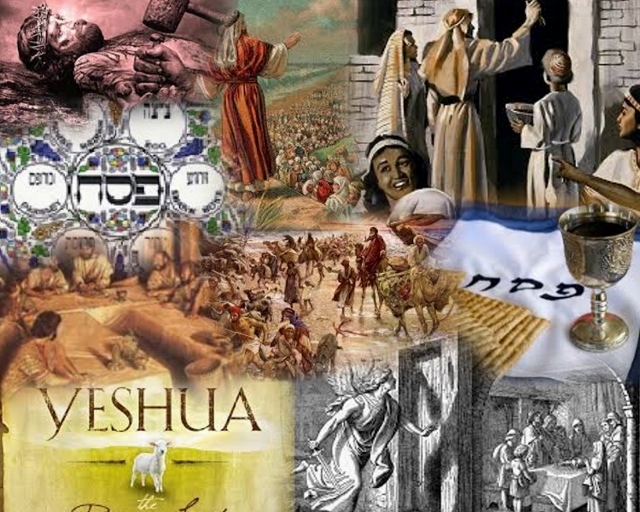 passover Collage (640x512)