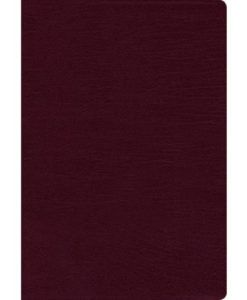 NIV Thinline Bible Comfort Print   Large Print   Indexed   Red Letter