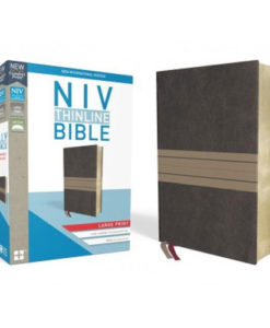 NIV Thinline Bible Comfort Print   Large Print   Red Letter