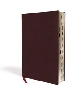 NIV Thinline Bible Comfort Print   Giant Print   Indexed   Red Letter   Bonded Leather - Burgundy