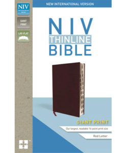 NIV Thinline Bible Comfort Print   Giant Print   Indexed   Red Letter