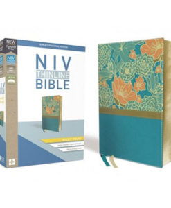 NIV Thinline Bible Comfort Print   Giant Print   Red Letter