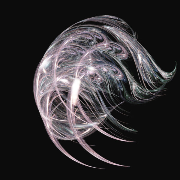digital visualization of a fractal
