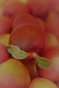 Valerie Interligi - Peaches At The Farm - Salon IOM
