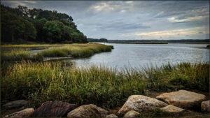 Ellen Gallagher-a1-Stony Brook Harbor